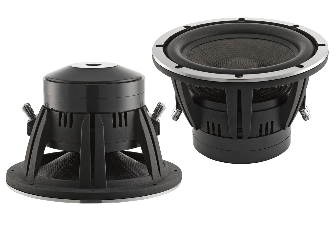 Blam high end 10 Woofer